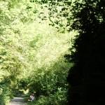 BIDASOA - VIA DEL TREN I